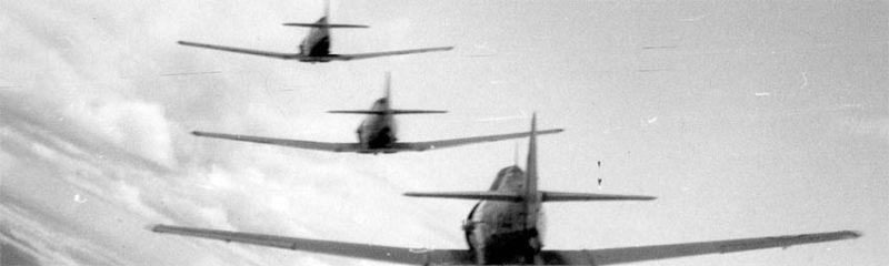 Harvards flying in formation