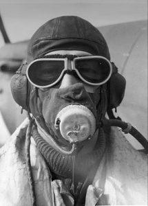 RAF D Type O2 Mask